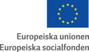 Europeiska socialfonden