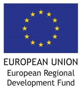 EU flag English vertical RGB