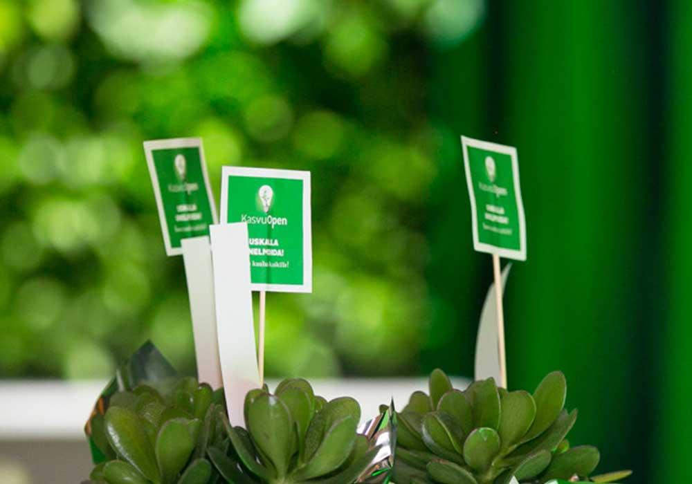 Kasvu Open -haku on käynnistynyt: Nyt etsitään taas kasvuhakuisia yrityksiä